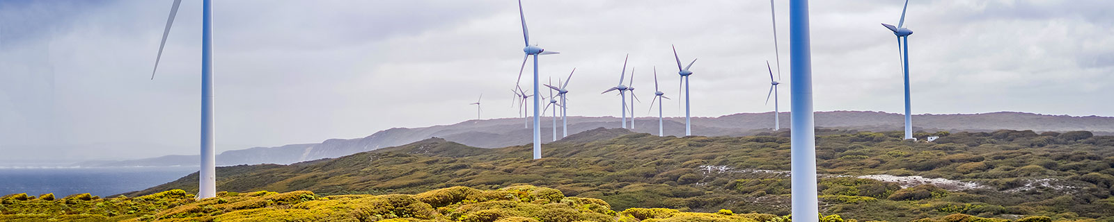 Albany wind farm, Harry Cunningham
