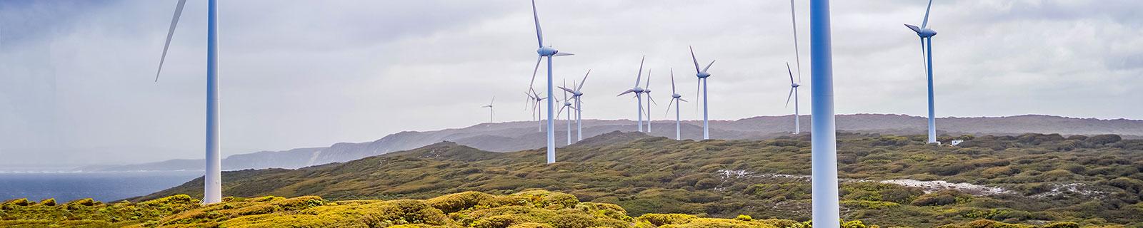 Albany wind farm, Harry Cunningham